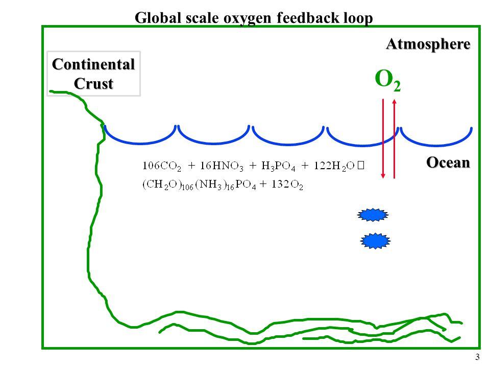 3 Global scale oxygen feedback loop O2O2