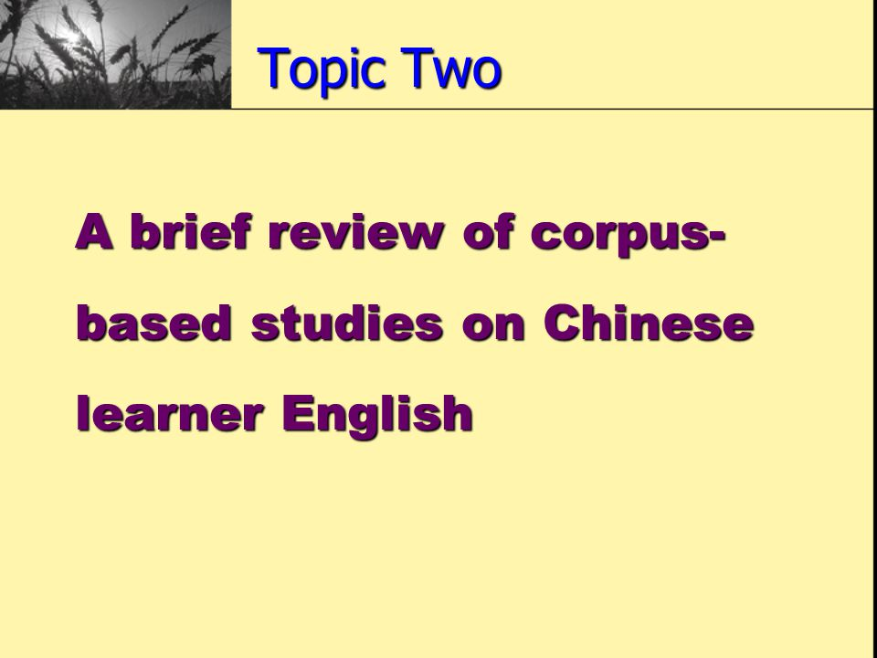 Topic Two A brief review of corpus- based studies on Chinese learner English