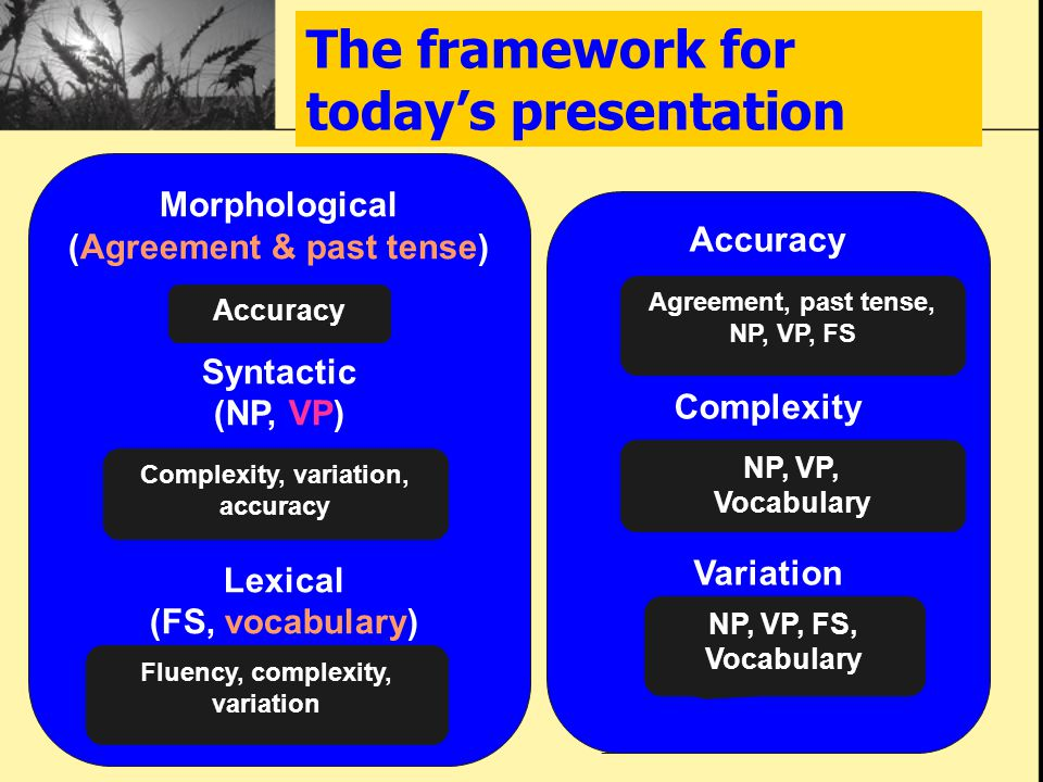 The framework for today's presentation Morphological (Agreement & past tense) Syntactic (NP, VP) Lexical (FS, vocabulary) Accuracy Complexity, variati