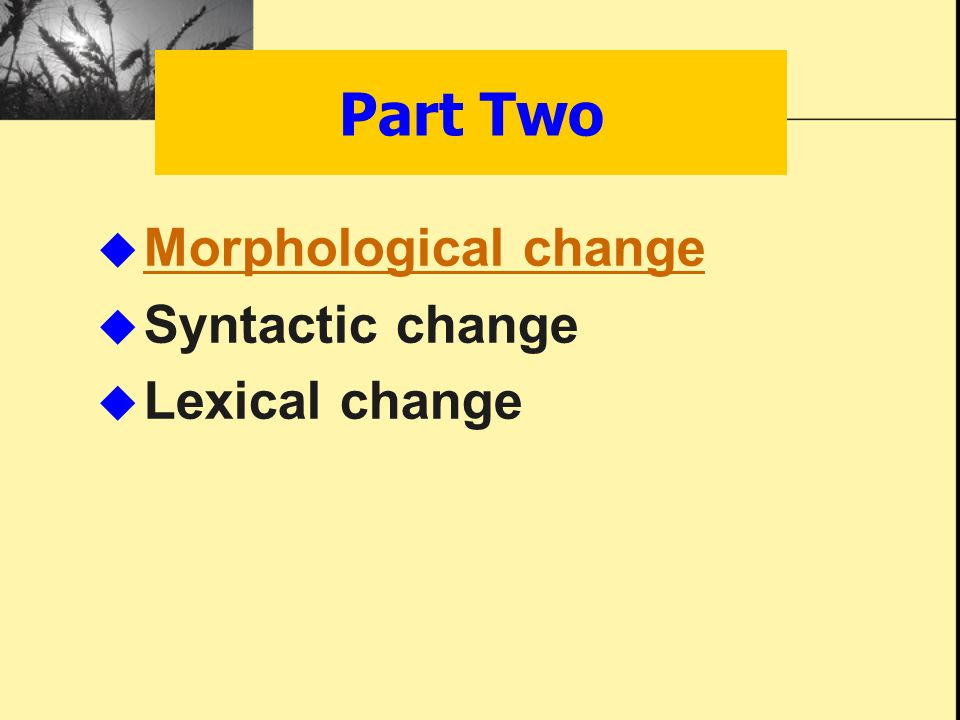  Morphological change Morphological change  Syntactic change  Lexical change Part Two