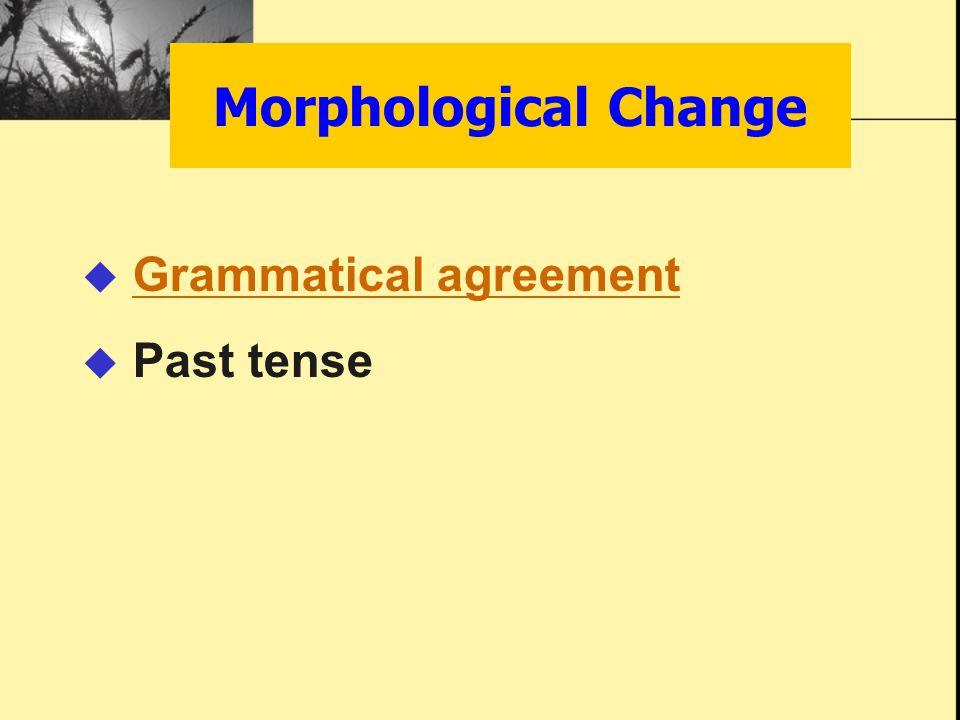 Morphological Change  Grammatical agreementGrammatical agreement  Past tense