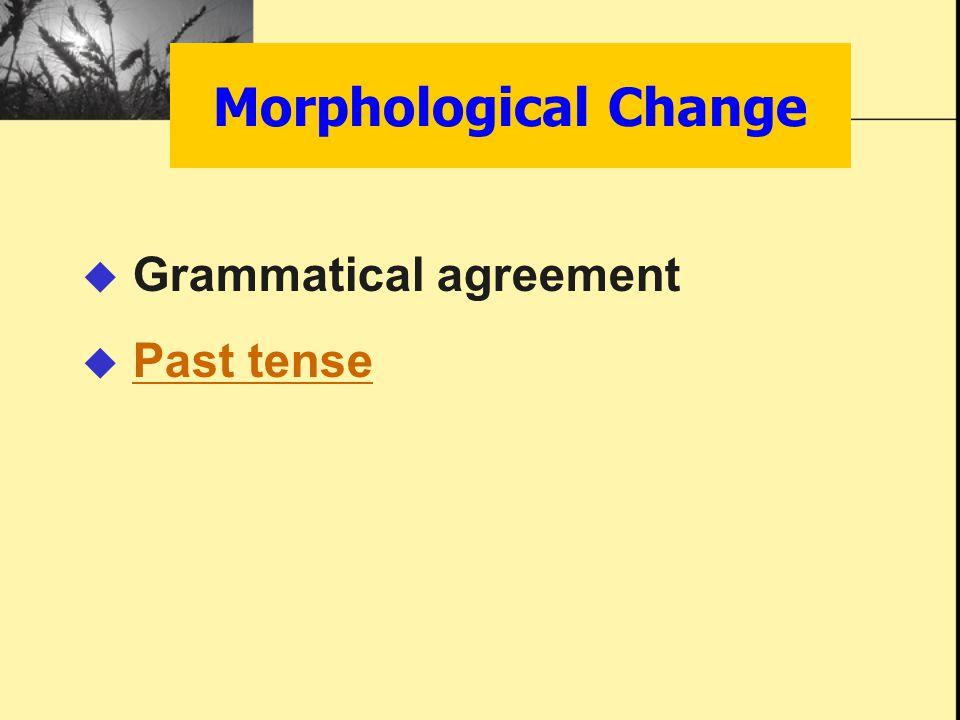 Morphological Change  Grammatical agreement  Past tensePast tense