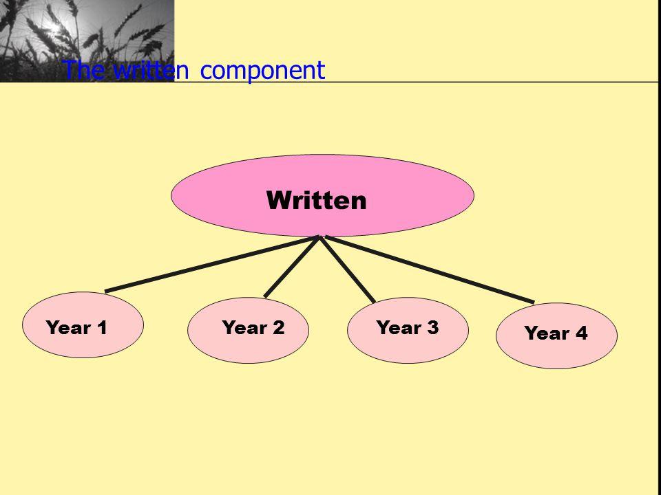 The written component Written Year 1Year 2Year 3 Year 4