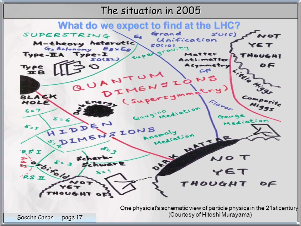 What do we expect to find at the LHC.