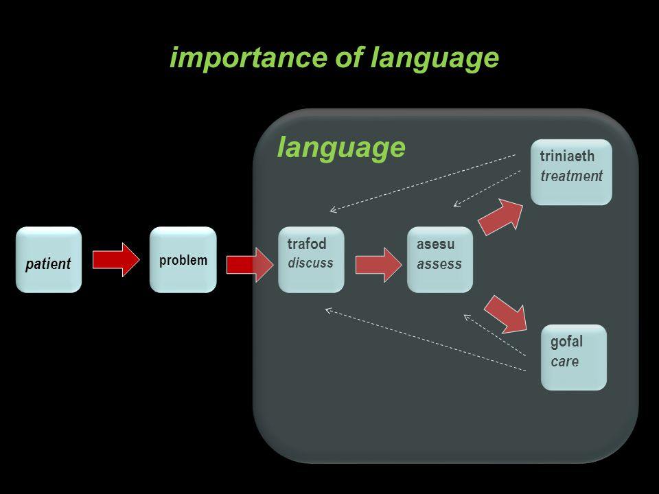 patient problem trafod discuss trafod discuss treatment assess care Altarriba & Santiago-Rivera (1994): Lack of knowledge of linguistic differences lead to inappropriate assessment importance of language