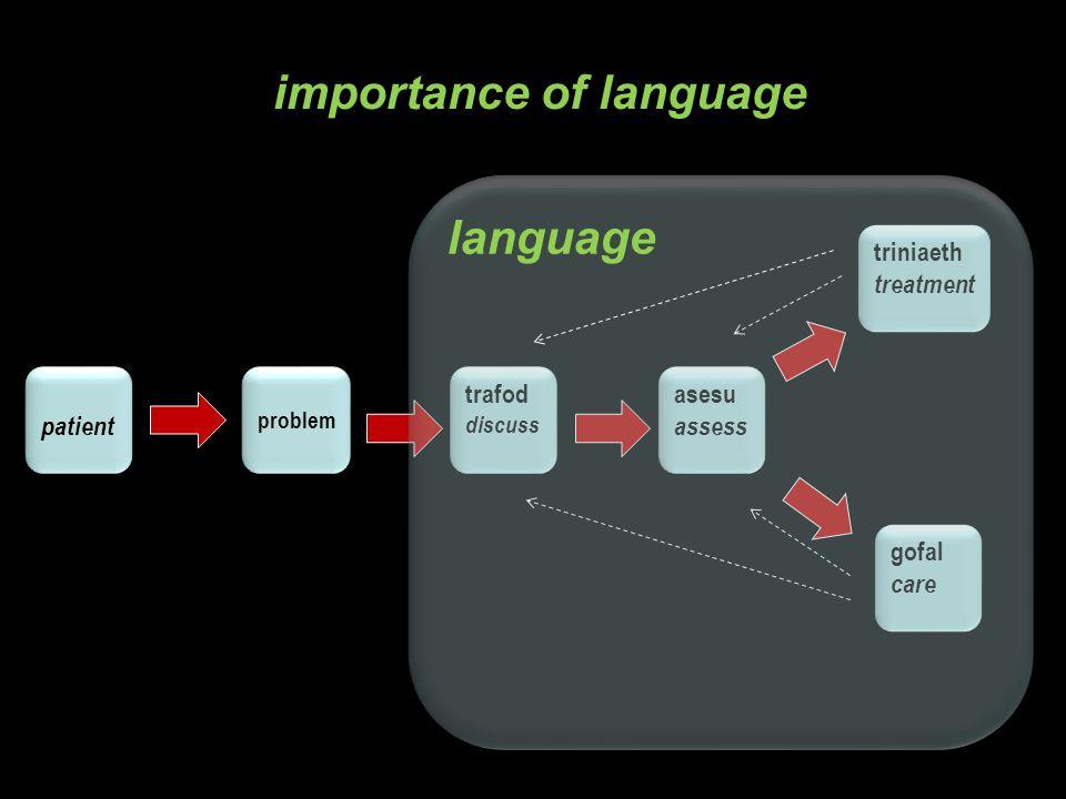 L2/ late bilinguals Language A + new Language B