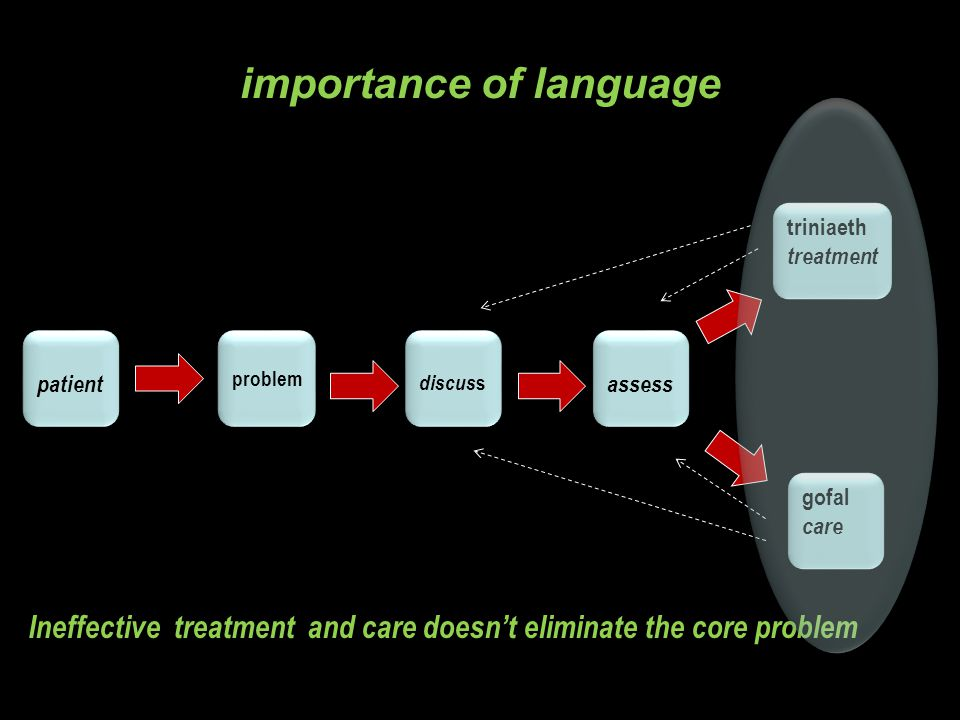 patient problem discus s triniaeth treatment triniaeth treatment assess gofal care gofal care Ineffective treatment and care doesn't eliminate the core problem importance of language