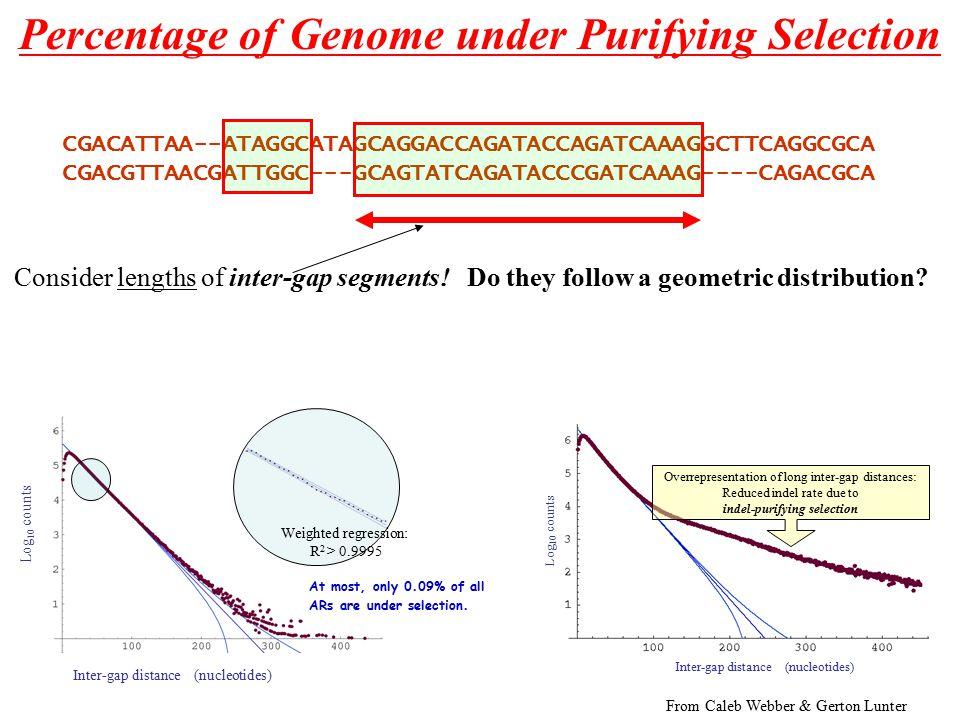 Consider lengths of inter-gap segments. Do they follow a geometric distribution.
