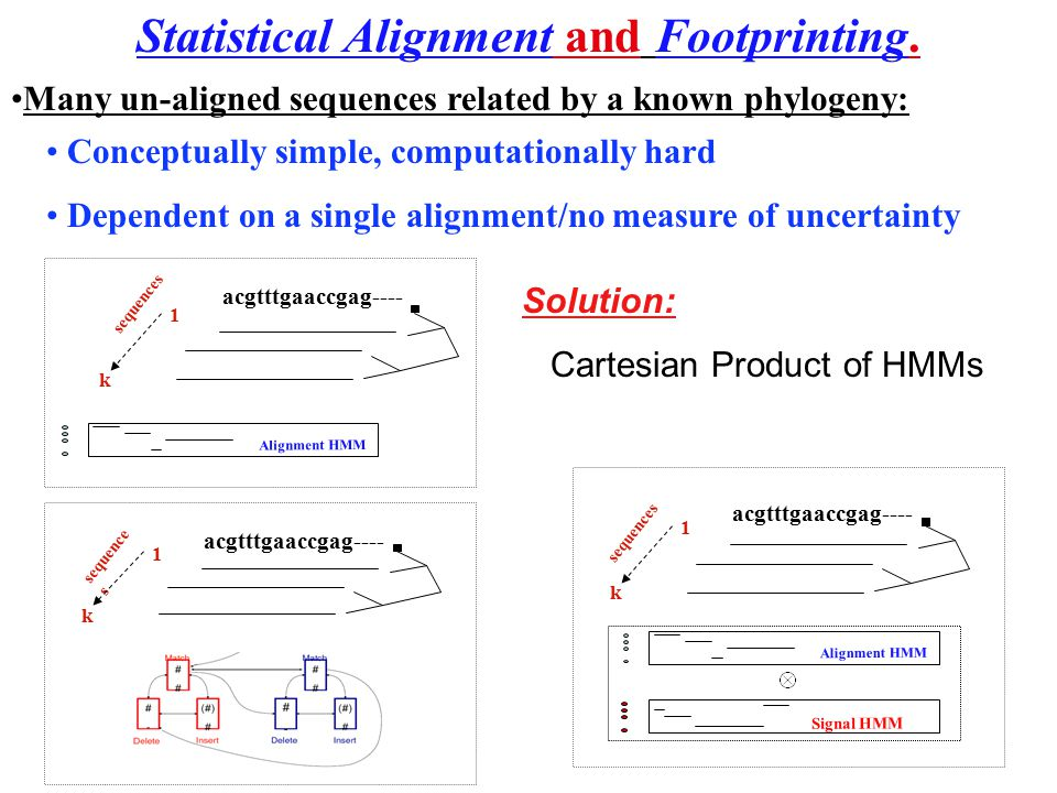 Many un-aligned sequences related by a known phylogeny: Conceptually simple, computationally hard Dependent on a single alignment/no measure of uncert