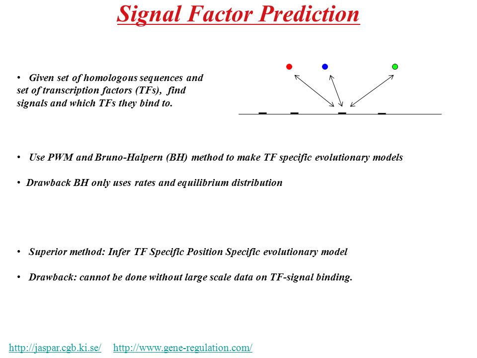 Signal Factor Prediction http://jaspar.cgb.ki.se/http://jaspar.cgb.ki.se/ http://www.gene-regulation.com/http://www.gene-regulation.com/ Given set of homologous sequences and set of transcription factors (TFs), find signals and which TFs they bind to.