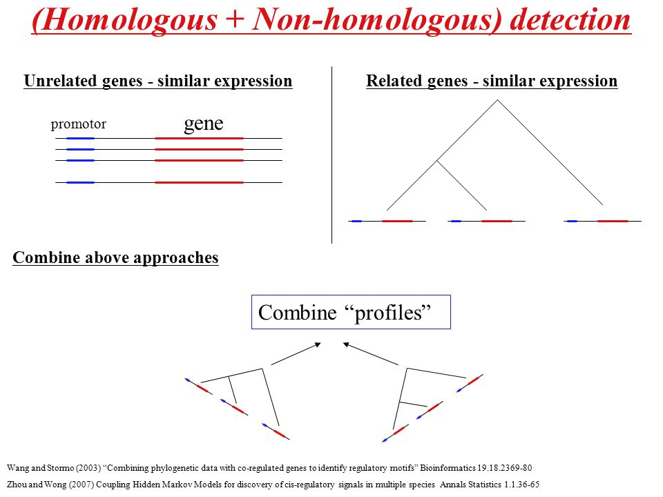"(Homologous + Non-homologous) detection Wang and Stormo (2003) ""Combining phylogenetic data with co-regulated genes to identify regulatory motifs"" Bio"