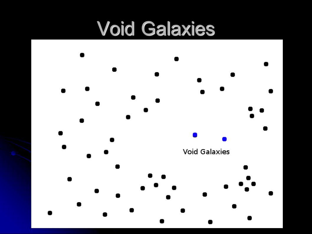 Void Galaxies