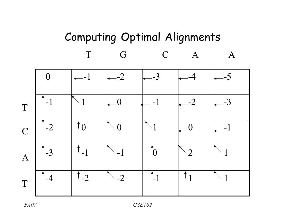 FA07CSE182 T G C A A T C A T 1 1 -2 -4 1 2 0 -3 0 1 0 0 -2 -3 -2 0 1 -5 -4 -3 -2 0 Computing Optimal Alignments