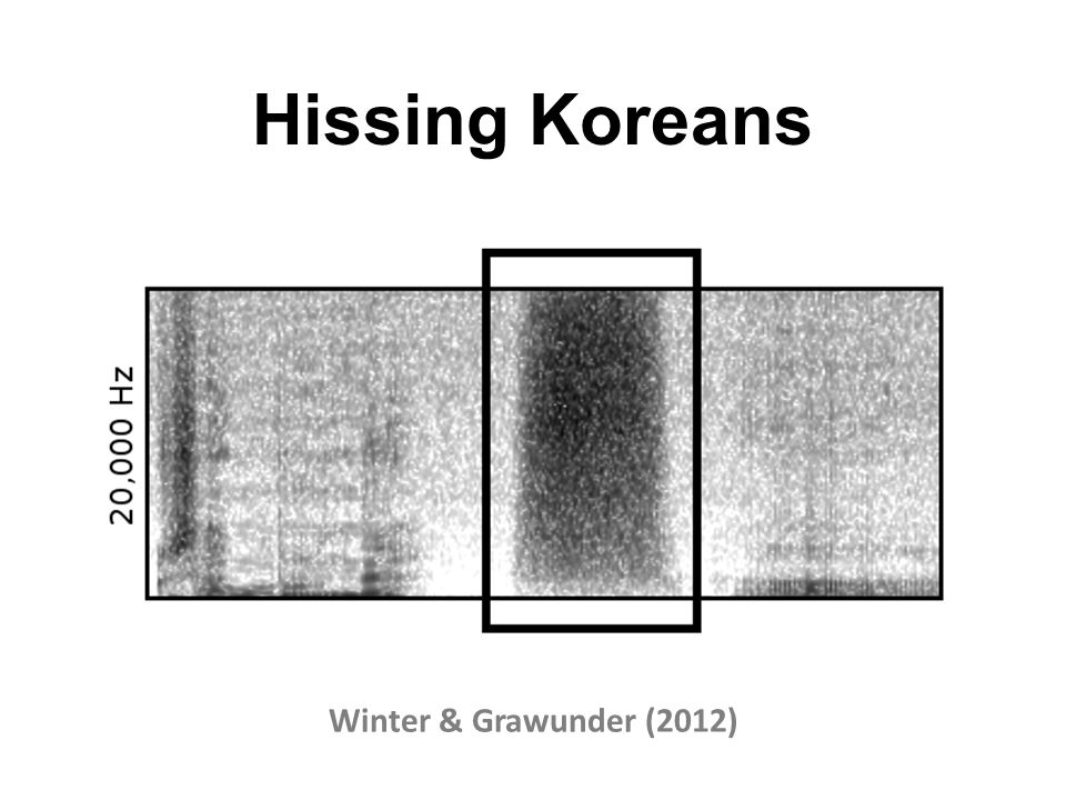 Hissing Koreans Winter & Grawunder (2012)
