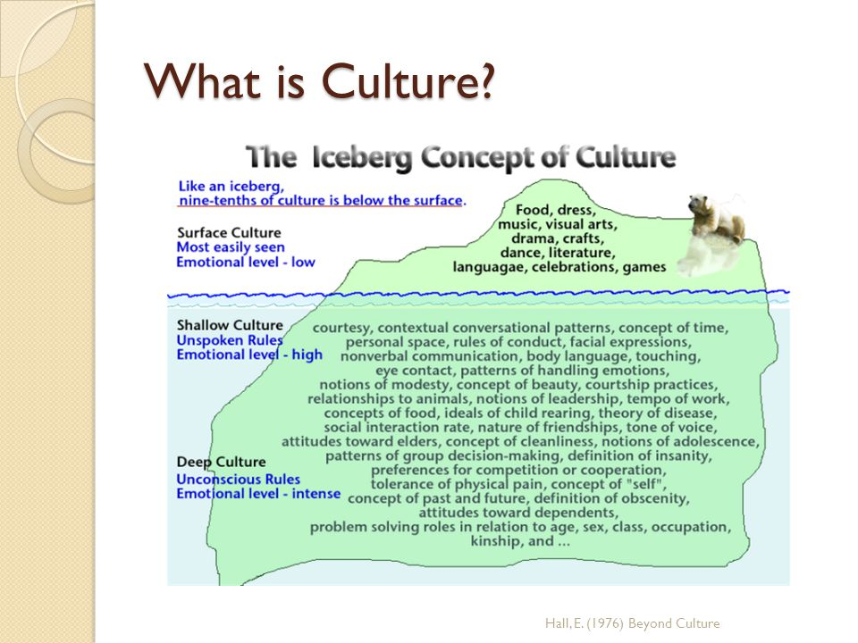 What is Culture Hall, E. (1976) Beyond Culture