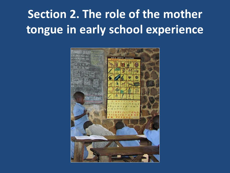 Section 2. The role of the mother tongue in early school experience