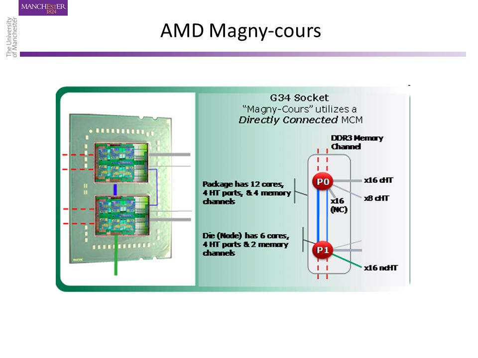 AMD Magny-cours