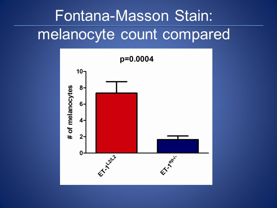 Fontana-Masson Stain: melanocyte count compared