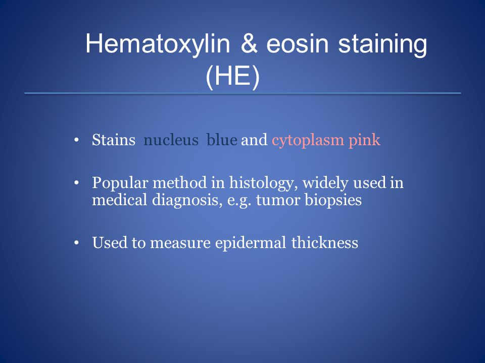 Hematoxylin & eosin staining (HE) Stains nucleus blue and cytoplasm pink Popular method in histology, widely used in medical diagnosis, e.g. tumor bio