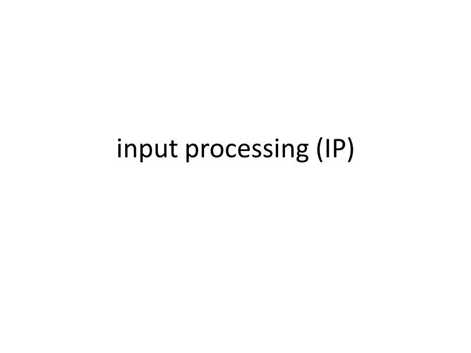 input processing (IP)
