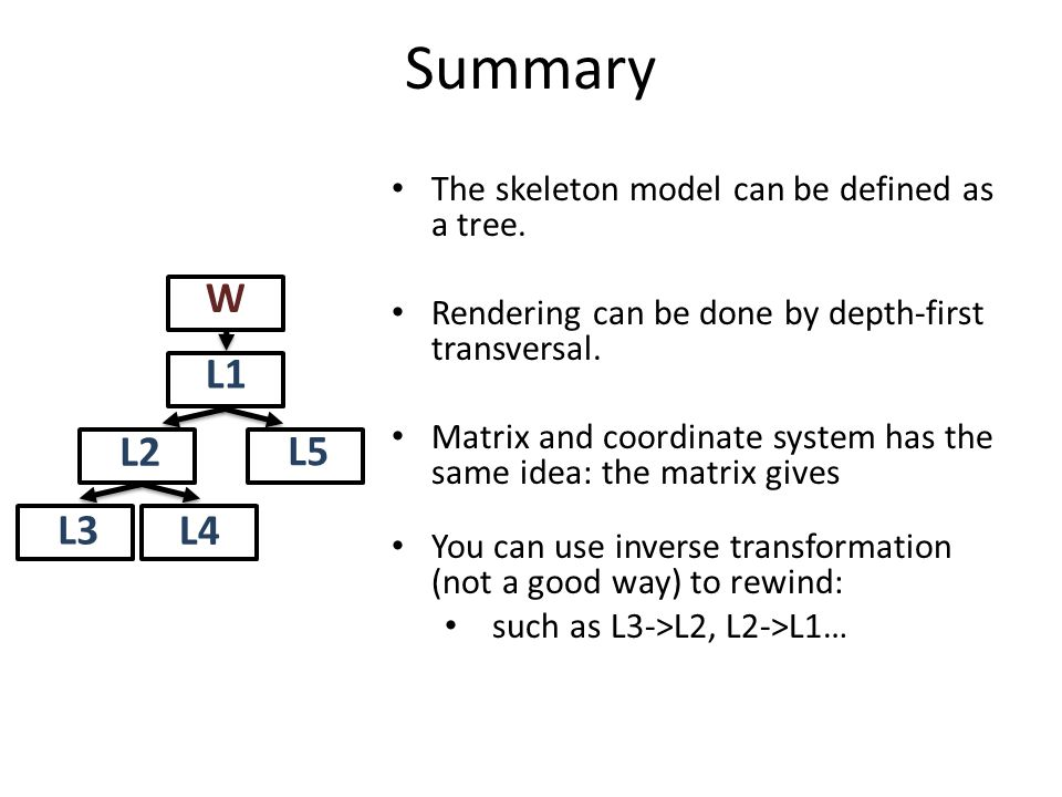 Summary W L1 L2 L3 L4 L5 The skeleton model can be defined as a tree.