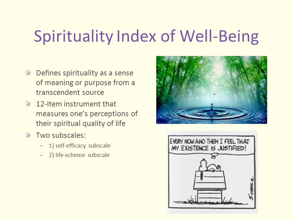 Spirituality Index of Well-Being Defines spirituality as a sense of meaning or purpose from a transcendent source 12-item instrument that measures one
