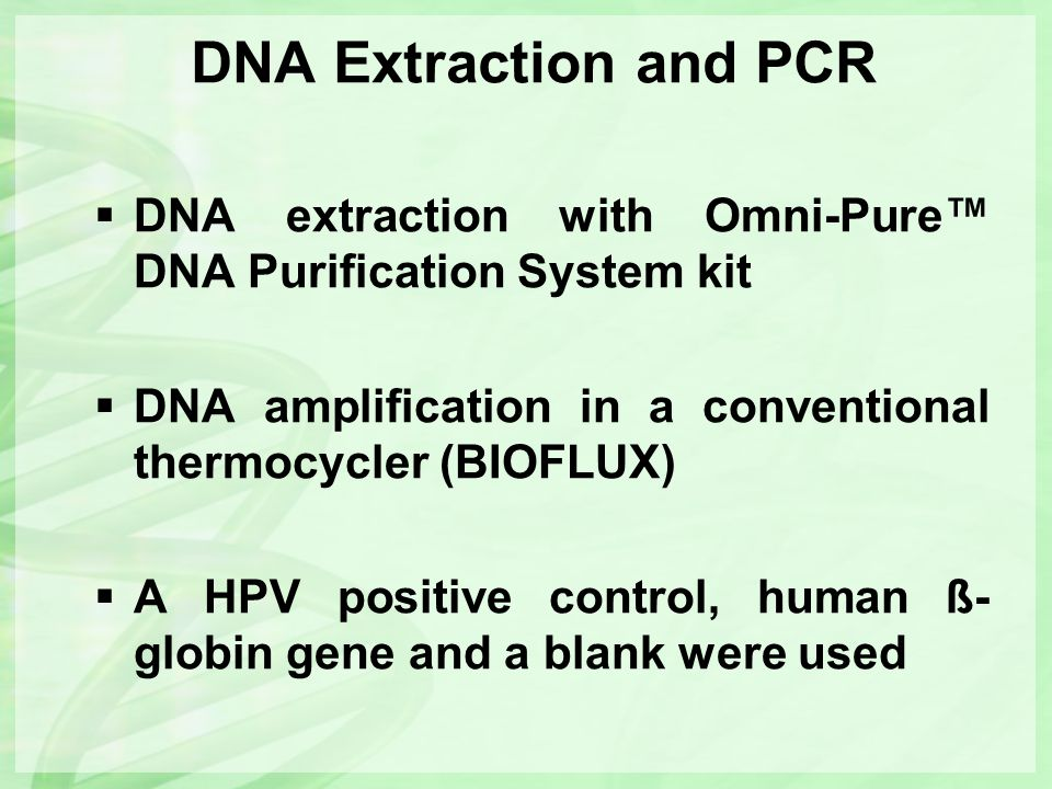 DNA Extraction and PCR  DNA extraction with Omni-Pure™ DNA Purification System kit  DNA amplification in a conventional thermocycler (BIOFLUX)  A H