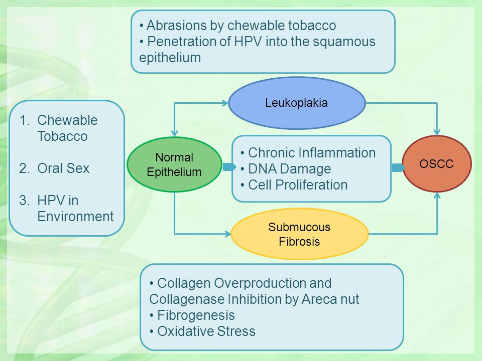 1.Chewable Tobacco 2.Oral Sex 3.HPV in Environment Abrasions by chewable tobacco Penetration of HPV into the squamous epithelium Collagen Overproducti