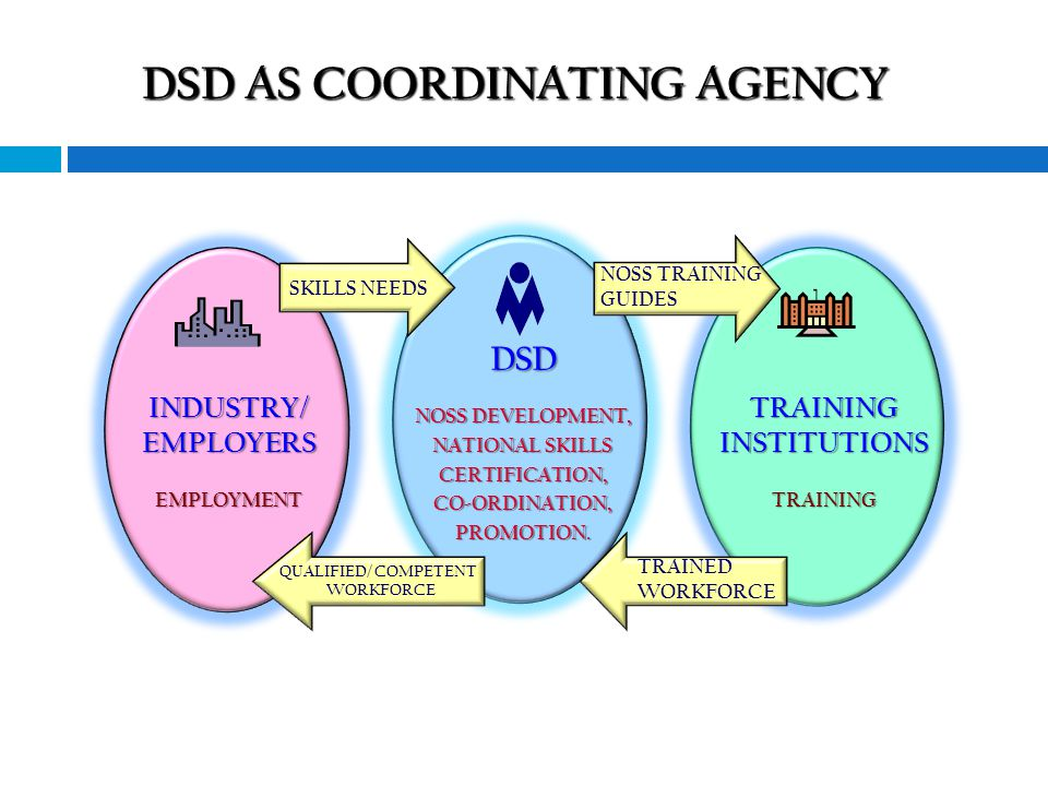 12 DSD NOSS DEVELOPMENT, NATIONAL SKILLS CERTIFICATION, CO-ORDINATION,PROMOTION.