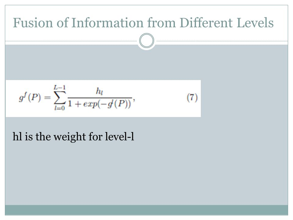 Fusion of Information from Different Levels hl is the weight for level-l