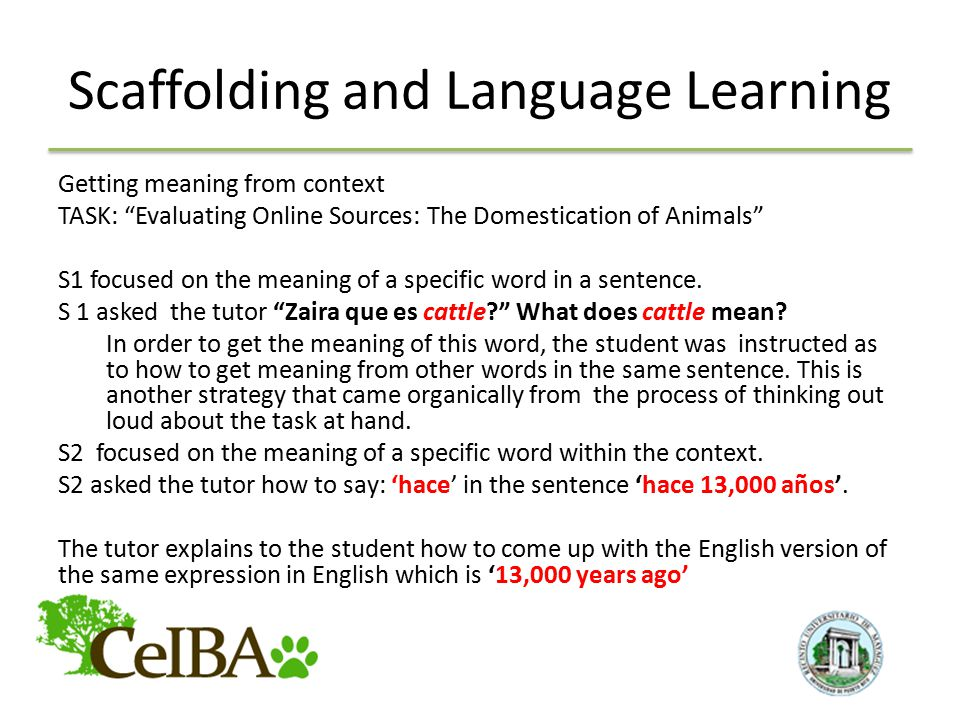 Scaffolding and Language Learning Getting meaning from context TASK: Evaluating Online Sources: The Domestication of Animals S1 focused on the meaning of a specific word in a sentence.
