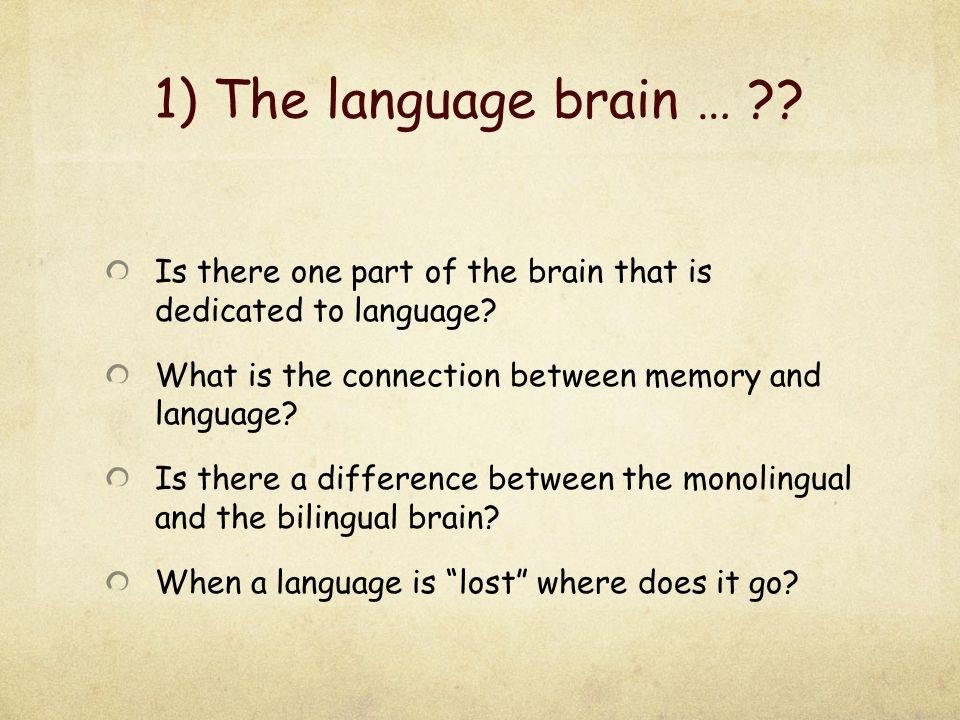 Where is language.