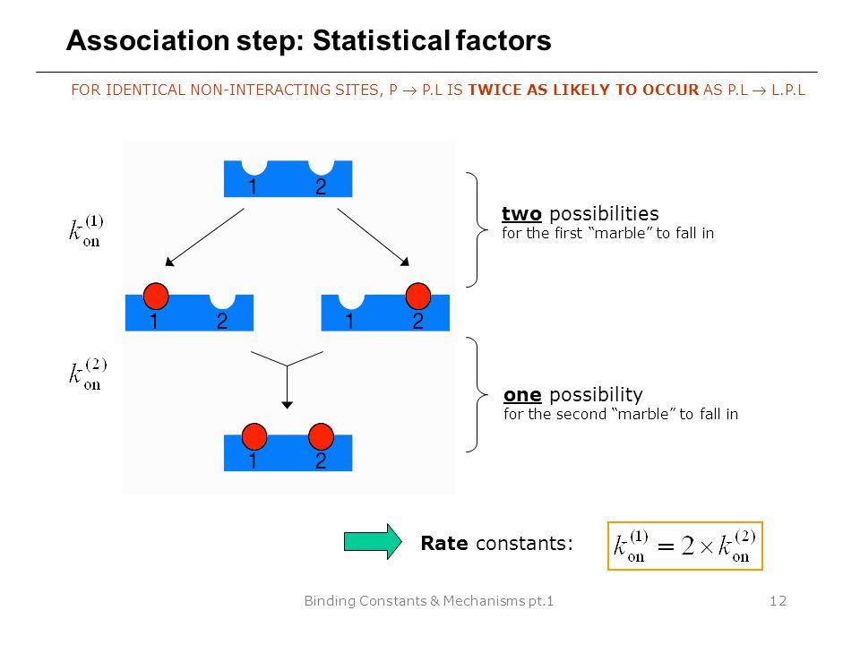 Binding Constants & Mechanisms pt.112 Association step: Statistical factors FOR IDENTICAL NON-INTERACTING SITES, P  P.L IS TWICE AS LIKELY TO OCCUR A