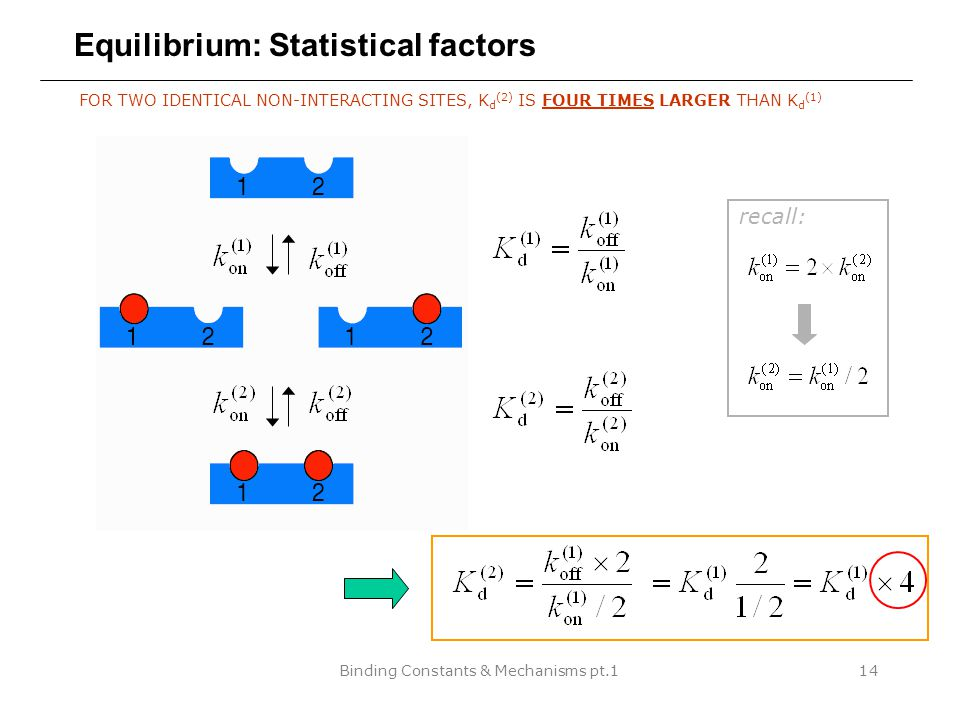 Binding Constants & Mechanisms pt.114 Equilibrium: Statistical factors FOR TWO IDENTICAL NON-INTERACTING SITES, K d (2) IS FOUR TIMES LARGER THAN K d (1) recall: