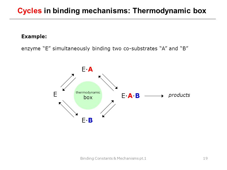 """Binding Constants & Mechanisms pt.119 Cycles in binding mechanisms: Thermodynamic box Example: enzyme """"E"""" simultaneously binding two co-substrates """"A"""""""
