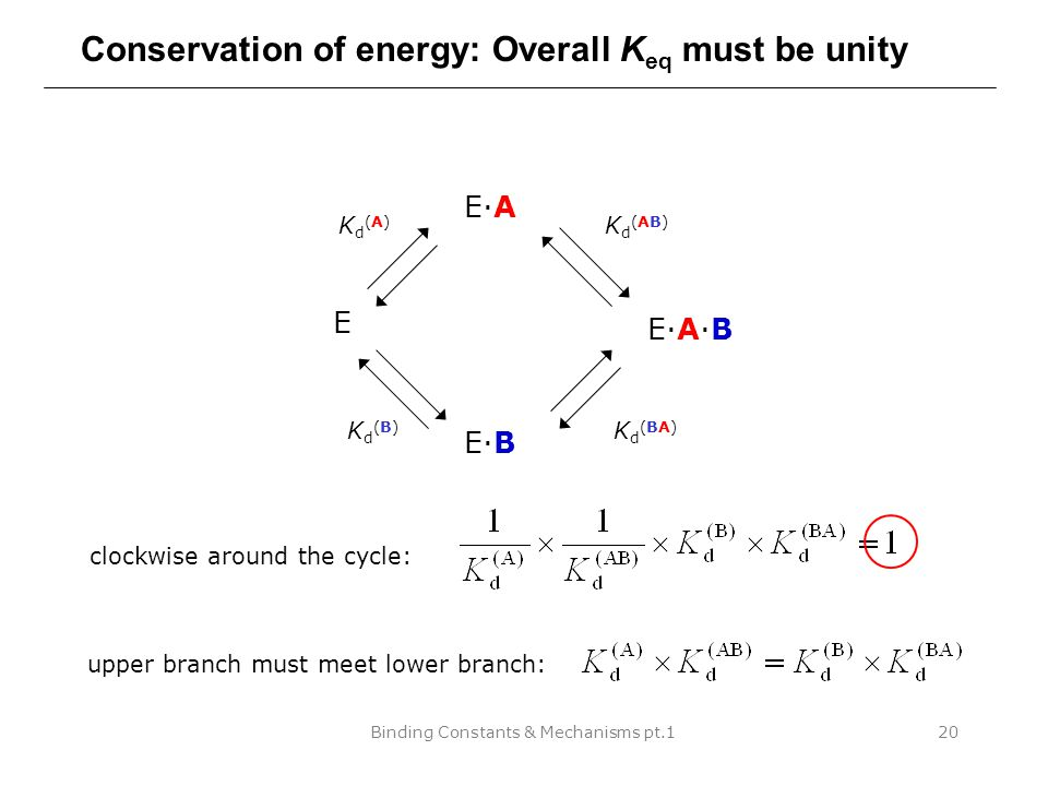 Binding Constants & Mechanisms pt.120 Conservation of energy: Overall K eq must be unity E E·A E·B E·A·B Kd(A)Kd(A) Kd(B)Kd(B) Kd(AB)Kd(AB) Kd(BA)Kd(BA) clockwise around the cycle: upper branch must meet lower branch: