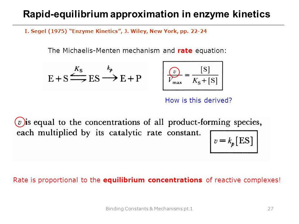 Binding Constants & Mechanisms pt.127 Rapid-equilibrium approximation in enzyme kinetics I.