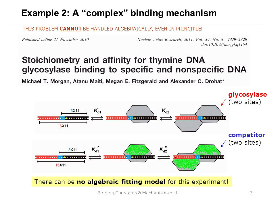 Binding Constants & Mechanisms pt.18 A complex binding mechanism in DynaFit THIS PROBLEM CANNOT BE HANDLED ALGEBRAICALLY, EVEN IN PRINCIPLE.