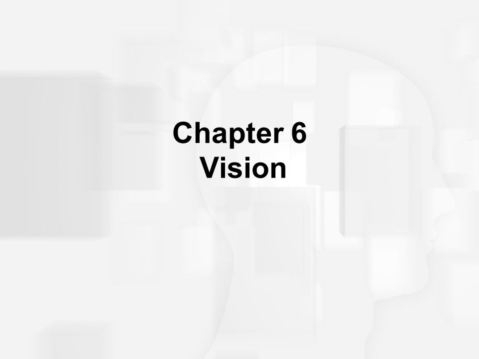 Chapter 6 Vision