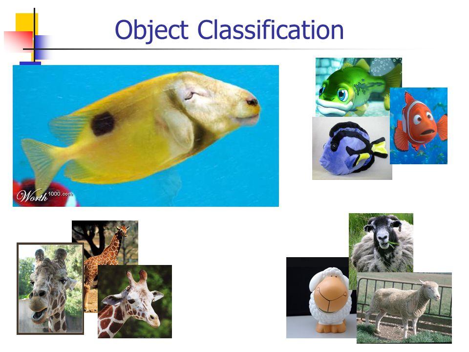 Object Classification ?