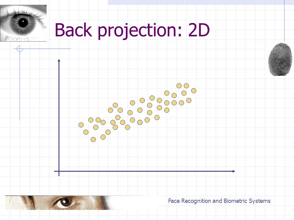 Face Recognition and Biometric Systems Back projection: 2D