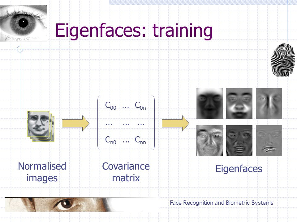 Face Recognition and Biometric Systems Eigenfaces: training Normalised images C 00 C n0 C 0n C nn... Covariance matrix Eigenfaces
