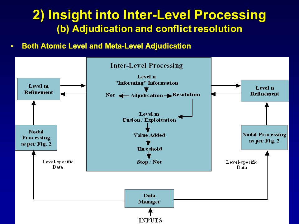 2) Insight into Inter-Level Processing (b) Adjudication and conflict resolution Both Atomic Level and Meta-Level Adjudication