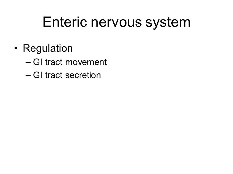 Enteric nervous system Regulation –GI tract movement –GI tract secretion