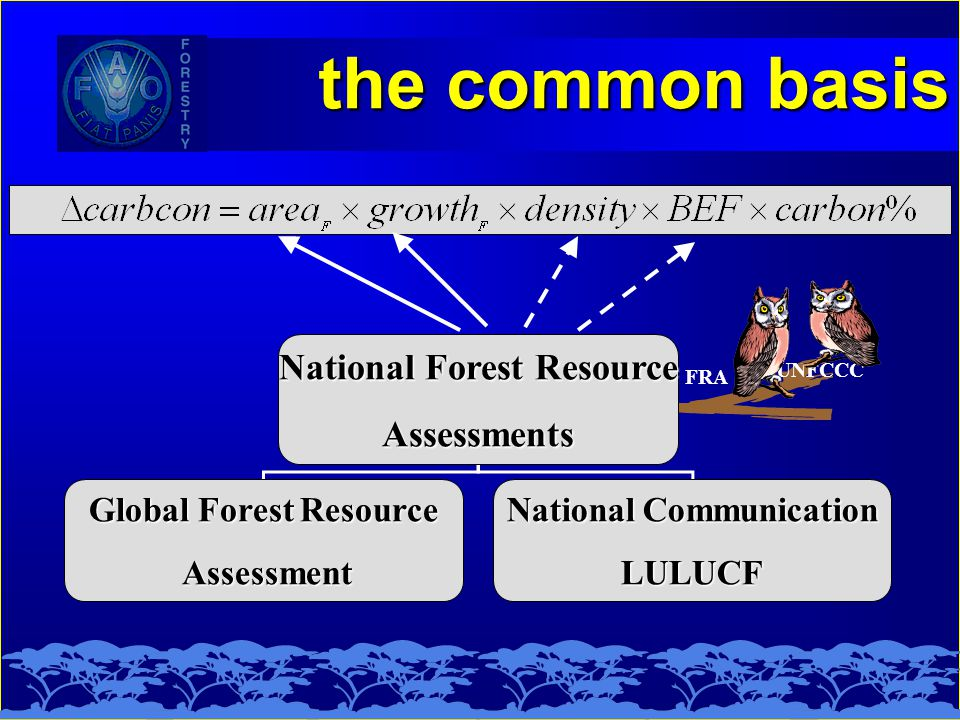 National Forest Resource Assessments Global Forest Resource Assessment Assessment National Communication LULUCF FRA UNFCCC the common basis the common basis
