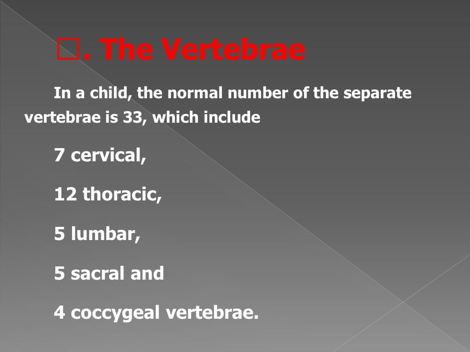 Ⅰ. The Vertebrae In a child, the normal number of the separate vertebrae is 33, which include 7 cervical, 12 thoracic, 5 lumbar, 5 sacral and 4 coccyg