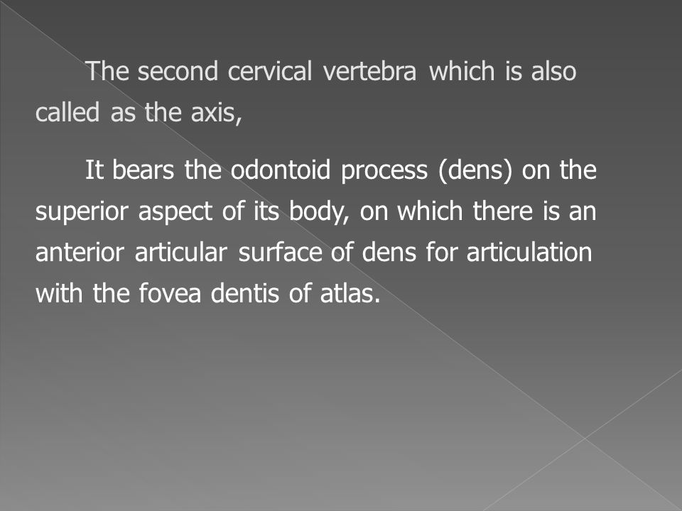 The second cervical vertebra which is also called as the axis, It bears the odontoid process (dens) on the superior aspect of its body, on which there