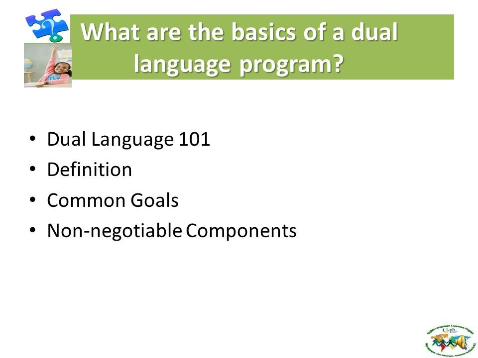 What are the basics of Dual Language (DL) Programs.