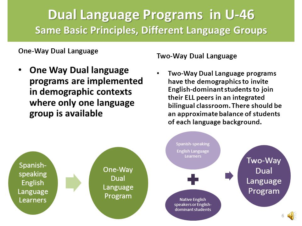 Dual Language Programs...