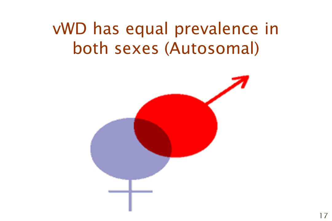 17 vWD has equal prevalence in both sexes (Autosomal)